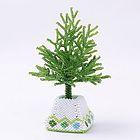 ミニチュアツリーとグリーンの台形のポット・ホワイト&グリーン:KT443-1-2